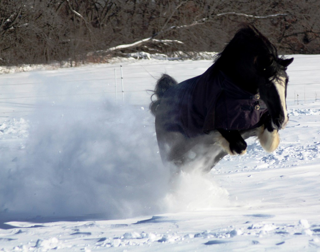 Who needs a snowmobile when you have a Claymore?